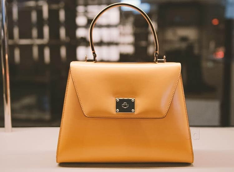 What Is a Fancy Handbag for a Woman?